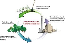 Presentation on Loan for Bio Energy Power Plant