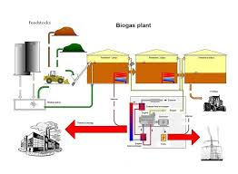 Business Plan on Bio Gas Plant - Assignment Point