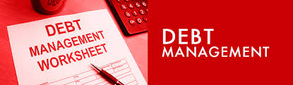 General Information about Corporate Debt Management
