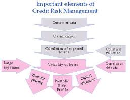 Credit Risk Management in State Bank of India