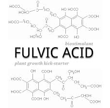 Discussed on Fulvic Acid – Vital to Plant Health