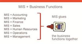 Lecture on Functional Aspects of MIS