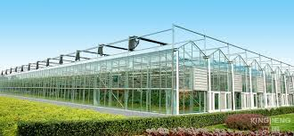 Discuss on Glass Greenhouse for Proper Nurturing of Plants