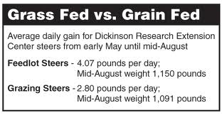 Discuss The Difference Between Grass Fed vs Grain Fed