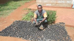 Analysis on Produce Energy With Green Briquettes