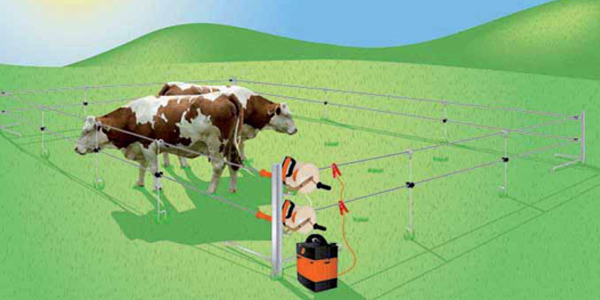 Analysis on the Advantages of Using Electric Fencing