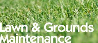 Describe On Lawn Care Maintenance Company – For Total Renovation