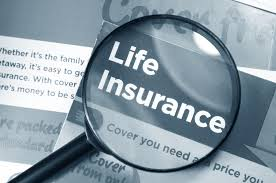 Discussed on Term Life Insurance