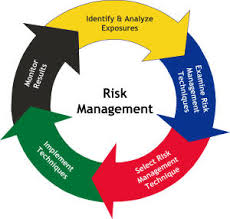 Discuss on Managing Risk in Business