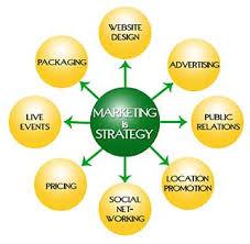 Marketing Strategies of Aftab Bahumukhi Farm Limited