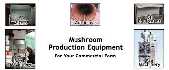 Discuss on Importance of Mushroom Cultivation Equipment