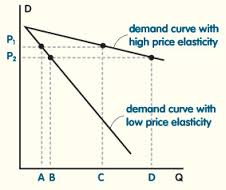 Lecture on Price Elasticity