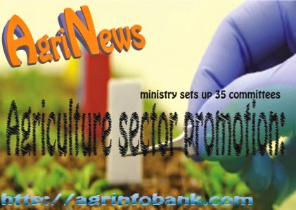 Promote Agriculture Sector Step 0f Kneya