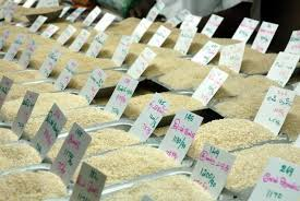 Fluctuation in Price of Rice Market