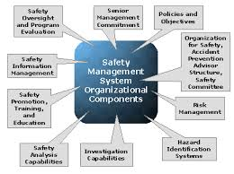 Discuss on Safety Management Process