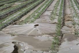Discuss on Soil Liquefaction Hazard Mitigation