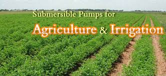 Submersible Pump  in Agricultural