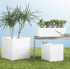 To Get Knowledge About White Planters