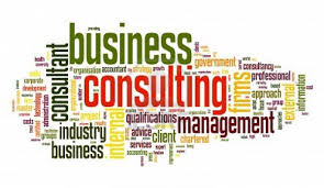 Define and Discuss on Business Consulting