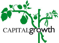 Explain Capital Growth Investment Strategy