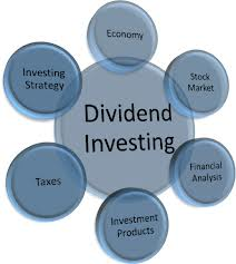 Define and Discuss on Dividend Investing