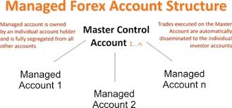 Explain how to Open a Forex Account