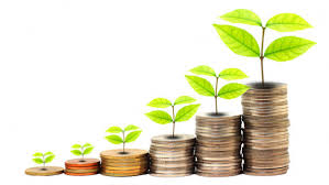 Explain Types of Guaranteed Investments