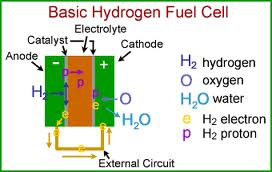 Presentation on Hydrogen Fuel Cells