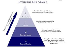 Analysis Managing Investment Risk