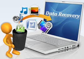 Find Professional Data Recovery