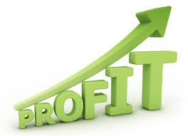 Explain Profit Margin for Health Insurance Companies