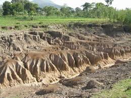Presentation on Mitigation and Soil Erosion