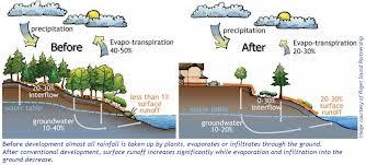 Seattle Stormwater Runoff Remediation