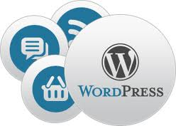 Word Press Development to Customize Web Applications