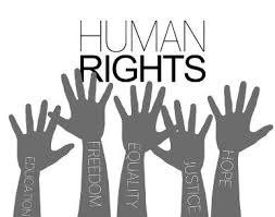 What is Fundamental Rights