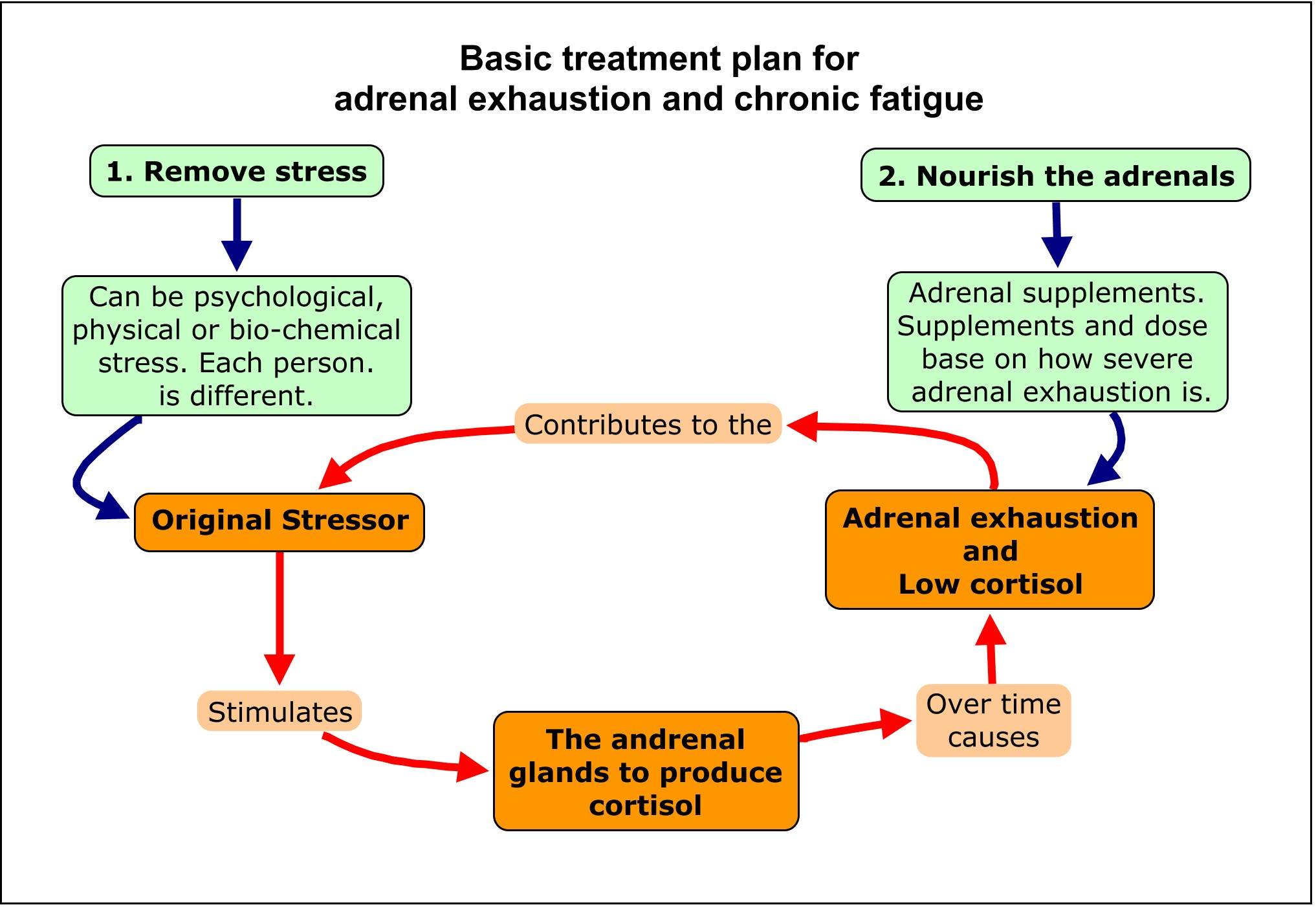 Analysis on Adrenal Fatigue