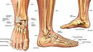 Causes and Treatment of Ankle Fractures