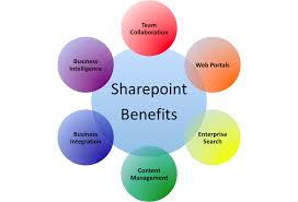 Good SharePoint Consultant