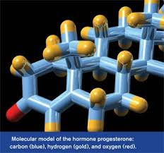 Explain Bioidentical Hormone Replacement Therapy