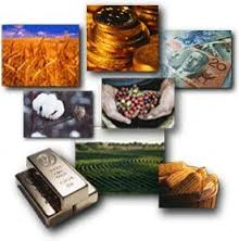 Learn about Commodity Investing