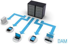 Digital Document Management Services