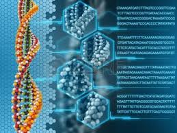 Nature of DNA Analysis