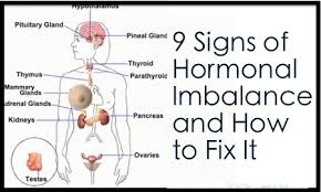 Common Effects of Hormonal Imbalances