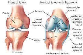 Some Common Ligament Injuries