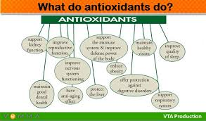 Effectiveness of Liquid Antioxidants