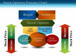 Explain Option Investing Process