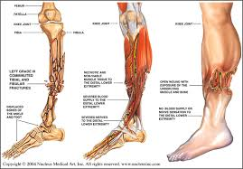 How to Avoid Orthopedic Injuries