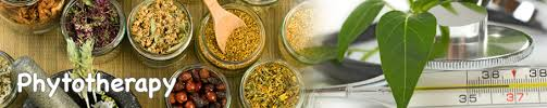 Benefits of Phytotherapy