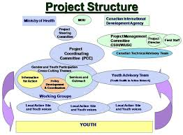Difference between Functional Structure and Project Structure