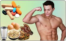 Explain how Protein Builds Muscle
